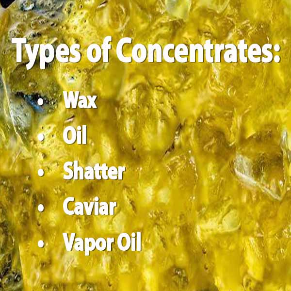 Types of Concentrates: wax, oil, shatter, caviar, vapor oil