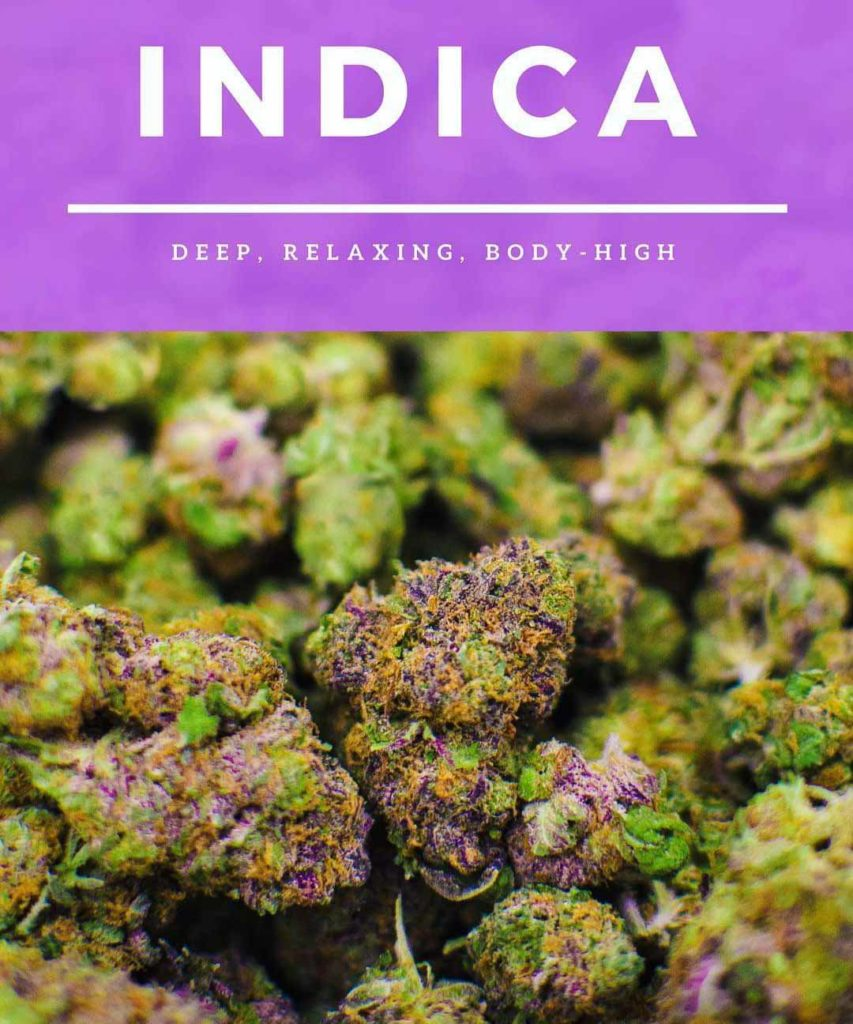 Indica marijuana flower is deep, relaxing, body high